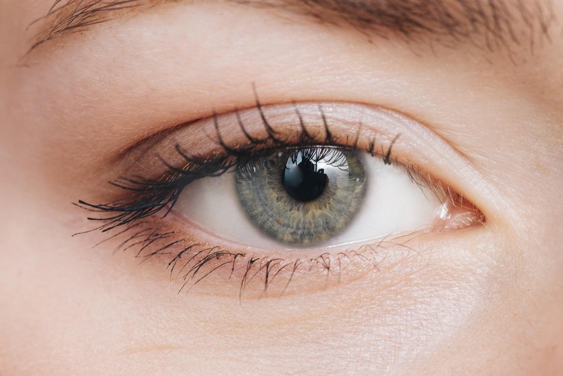 Image of a human eye