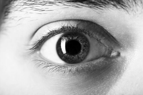 Photo of one eye