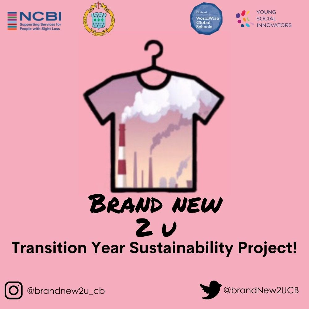 Brand New 2 U - Transition Year Sustainability Project